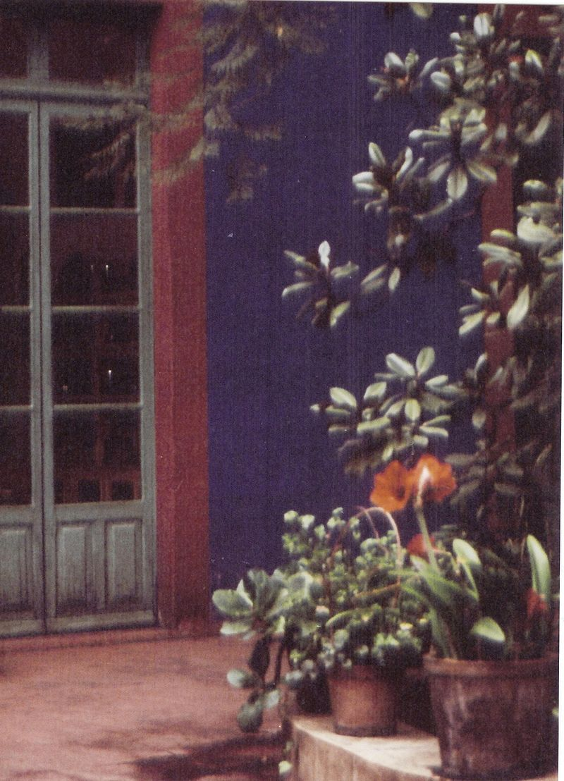 Frida:Courtyard